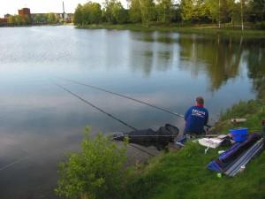 hoe doen vissen spelen